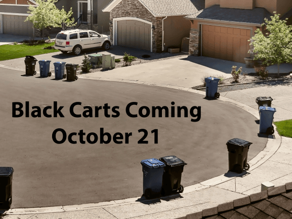 Black Carts Coming Small