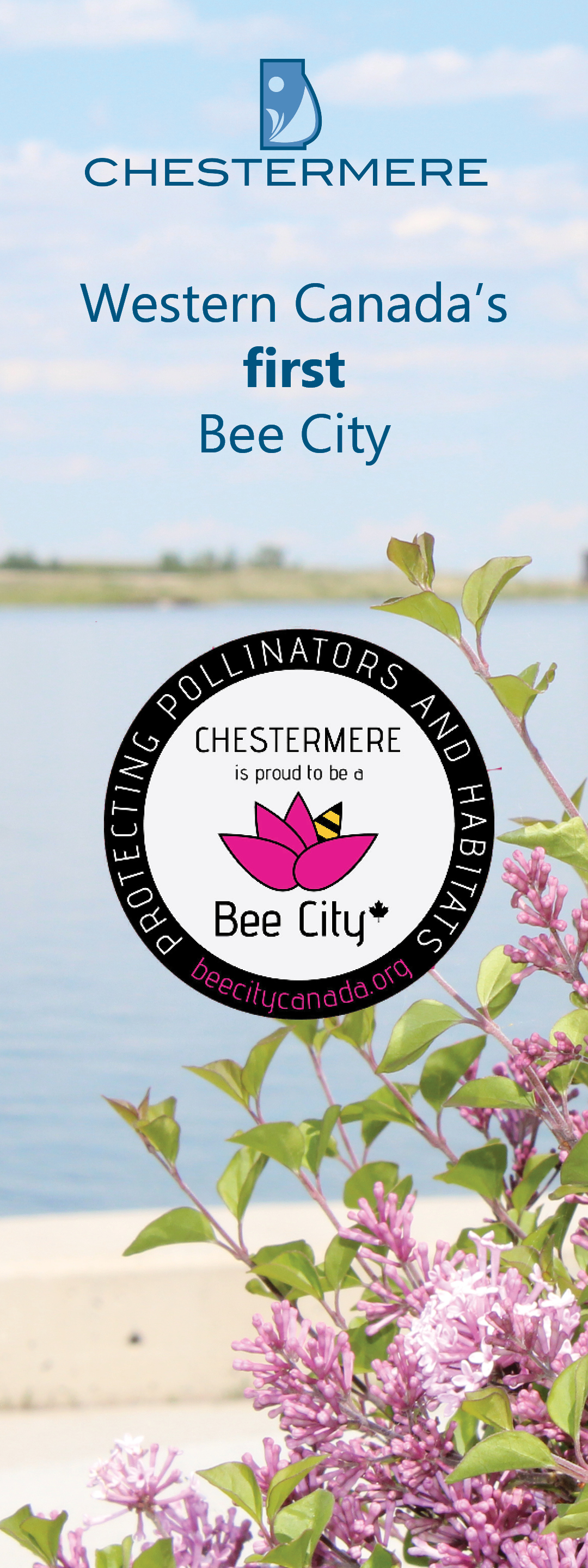 Bee City website2.jpg